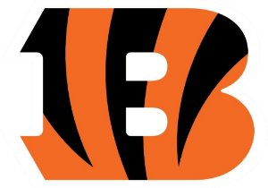 Adesivo Cincinnati Bengals NFL - Vinil Brilho 15x10cm