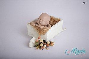 Carriola e Carroças Newborn