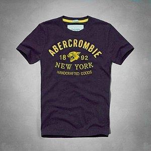 Camiseta Masculina Holli Aber A&F Modelo 19