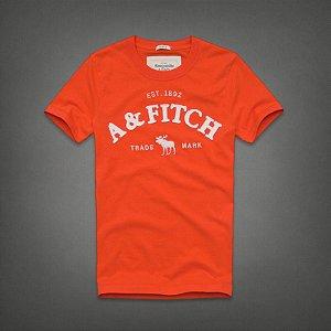 Camiseta Masculina Holli Aber A&F Modelo 33