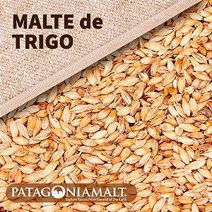 MALTE DE TRIGO PATAGONIA