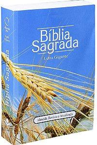 Biblia Sagrada Letra Gigante Almeida Revista e Atualizada