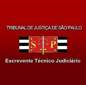 Escrevente TJ/SP (pré-edital) 2021 - teoria, resumos e 885 questões com comentários (com vídeos e atualizações gratuitas)