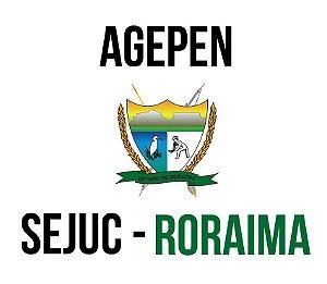 SEJUC RR (Agente Penitenciário) - apostila de informática (AOCP)