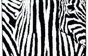 Tapete Aroeira Zebra 120x180cm