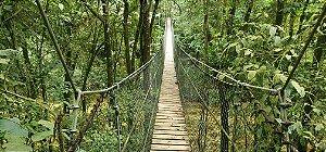 Parque das Neblinas - Trilhas Gerais com Transporte