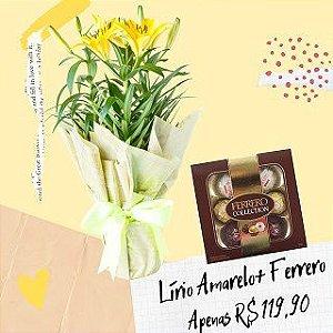 Lírio Amarelo com Ferrero Collection