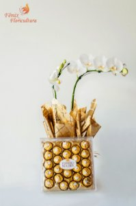 Luxúria de Orquídea Phalaenopsis com Ferrero Rocher