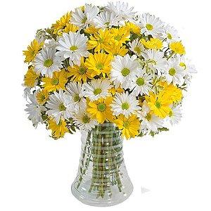 Luxuoso Arranjo de Margaridas Brancas e Amarelas