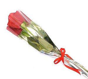 Botão de rosas vermelha premium