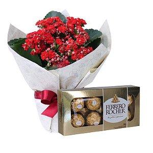 Flor da Fortuna Vermelha com Ferrero Rocher
