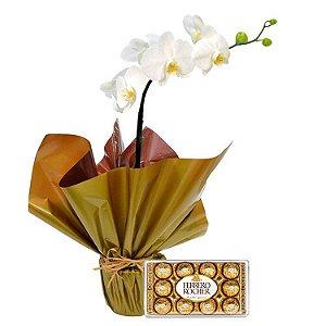Orquídea phalaenopsis plantada e ferrero 150g