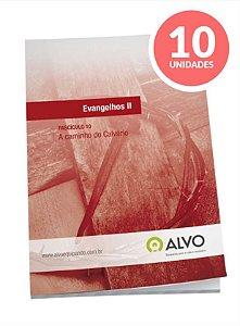 Fascículo 10 -Evangelhos II c 10 unidades