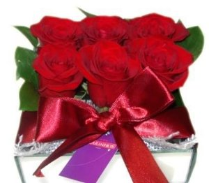 Rosas Espelhadas