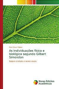 As individuações física e biológica segundo Gilbert Simondon