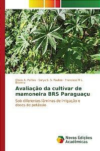 Avaliação da cultivar de mamoneira BRS Paraguaçu