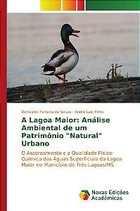 """A Lagoa Maior: Análise Ambiental de um Patrimônio """"Natural"""" Urbano"""