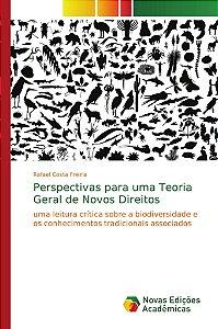 Perspectivas para uma Teoria Geral de Novos Direitos