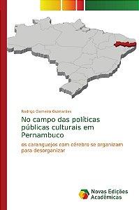 No campo das políticas públicas culturais em Pernambuco