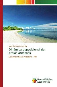 Dinâmica deposicional de praias arenosas