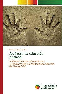 A gênese da educação prisional