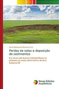 Perdas de solos e deposição de sedimentos