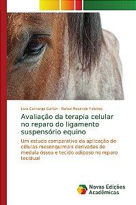 Avaliação da terapia celular no reparo do ligamento suspensório equino