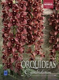 Coleção Rubi Volume 7 - Orquídeas Cymbidium