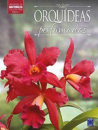 Coleção Rubi Volume 2 - Orquídeas Perfumadas
