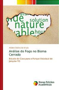 Análise do Fogo no Bioma Cerrado