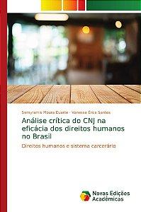 Análise crítica do CNJ na eficácia dos direitos humanos no B