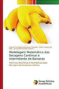 Modelagem Matemática das Secagens Contínua e Intermitente de
