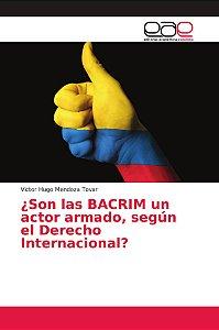 ¿Son las BACRIM un actor armado, según el Derecho Internacio