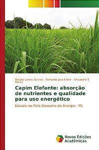 Capim Elefante: absorção de nutrientes e qualidade para uso