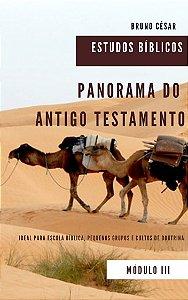 Panorama do Antigo Testamento: Estudos Bíblicos Módulo 3