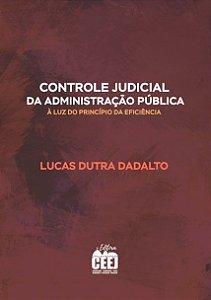 CONTROLE JUDICIAL DA ADMINISTRAÇÃO À LUZ DA EFICIÊNCIA