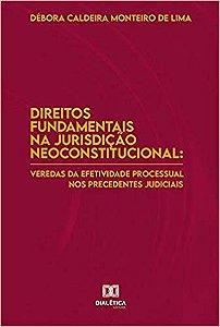 Direitos fundamentais na jurisdição neoconstitucional