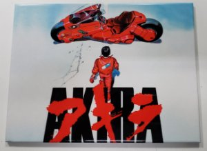 Placa de Metal 26x19 Akira
