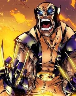 Quadro de Metal 26x19 X-Men - Wolverine Bersk Rage