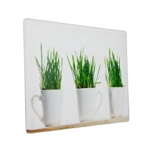 Quadro Decorativo - Mugs Plants - 30x40cm