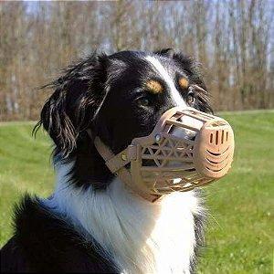 Focinheira Plástica American Pets - Bege