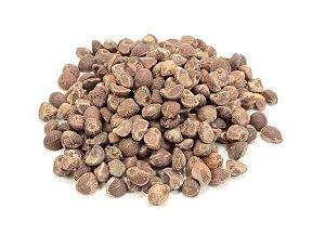 Argyreia nervosa Hawaii - 10 sementes