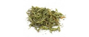 Verbena (Verbena officinalis) - Folhas inteiras