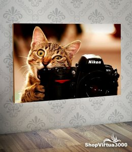 Placa em MDF Horizontal 6mm Ultra Brilho Personalizado Gato Fotografo - 01 Unidade