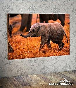 Placa em MDF Horizontal 6mm Ultra Brilho Personalizado Bebê Elefante - 01 Unidade