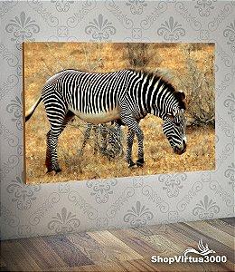 Placa em MDF Horizontal 6mm Ultra Brilho Personalizado Zebra Modelo 01 - 01 Unidade