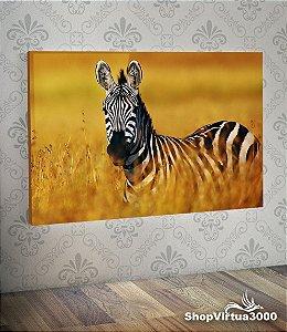 Placa em MDF Horizontal 6mm Ultra Brilho Personalizado Zebra Modelo 02 - 01 Unidade