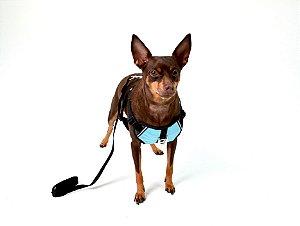 Peitoral Com Guia para Cachorro Paraquedas Azul
