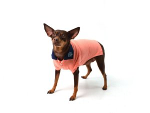 Camisa Polo para Cachorros | Gatos Life Style Salmão