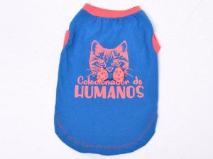 Regata para Gatos Miau Azul